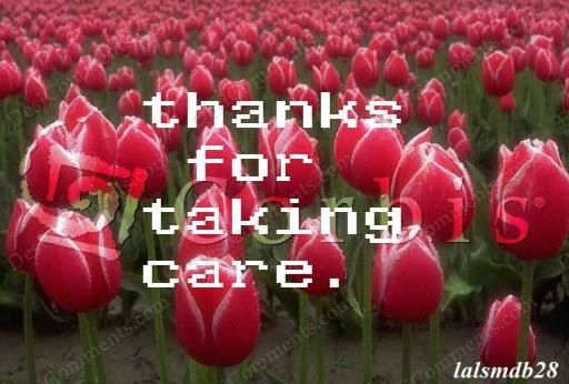 Picture: Thanks for taking care