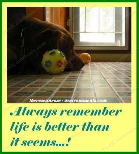 Life is better than it seems