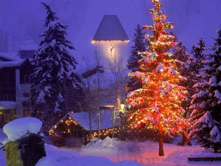 Picture: Beautiful Christmas Tree
