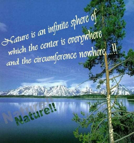Nature. This picture was submitted by Jobanjeet Kaur. HTML Code for Orkut,