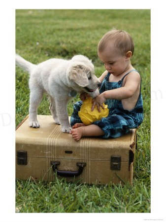 Baby playing with dog