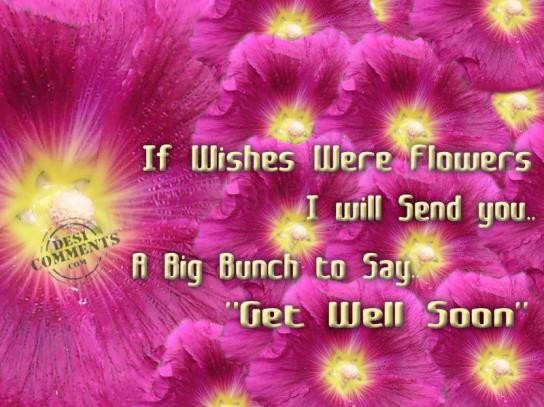 If wishes were flowers