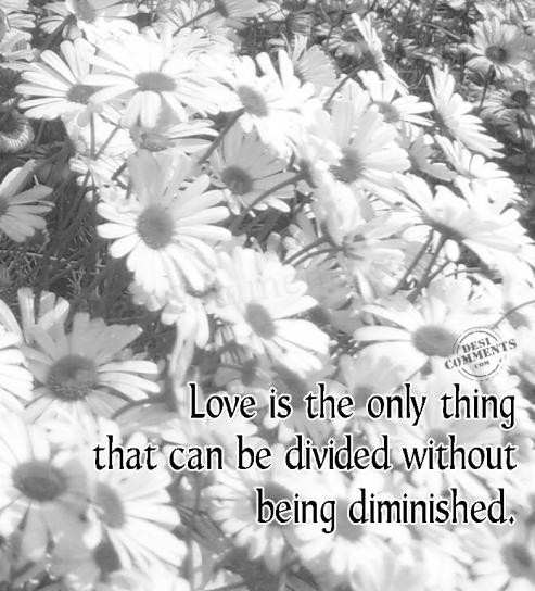 Love is the only thing