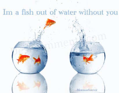 I m a fish out of water without you for A fish out of water