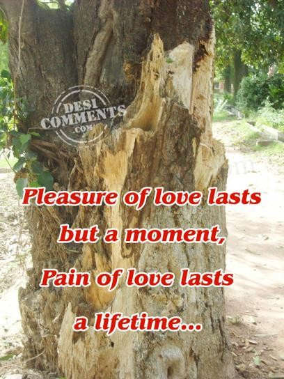 Pain of love lasts a lifetime...