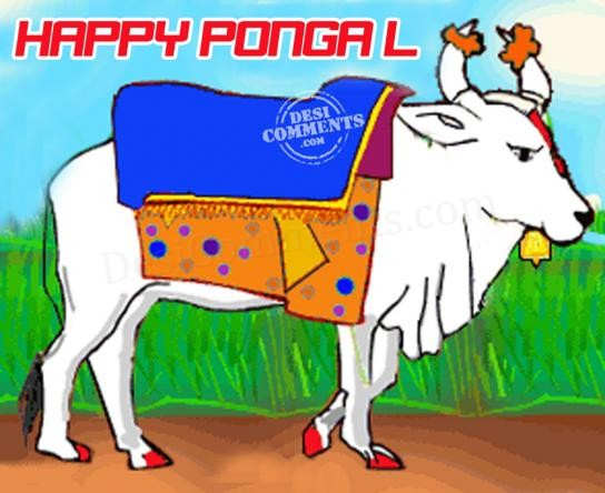 Pongal pictures images graphics happy pongal m4hsunfo Gallery