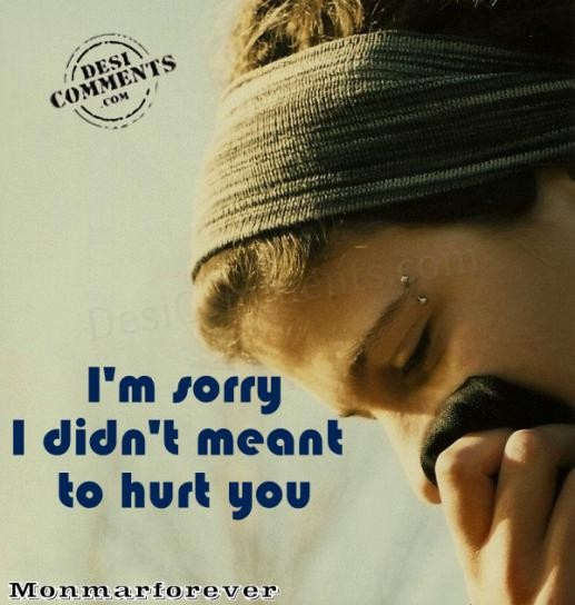 I'm Sorry I Didn't Meant To Hurt You
