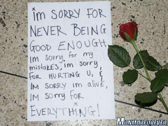 I'm sorry for never being good enough