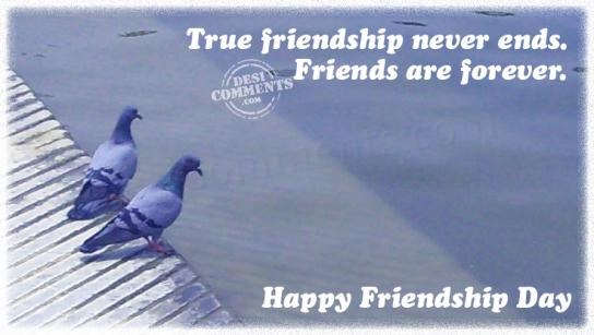 Picture: True friendship never ends