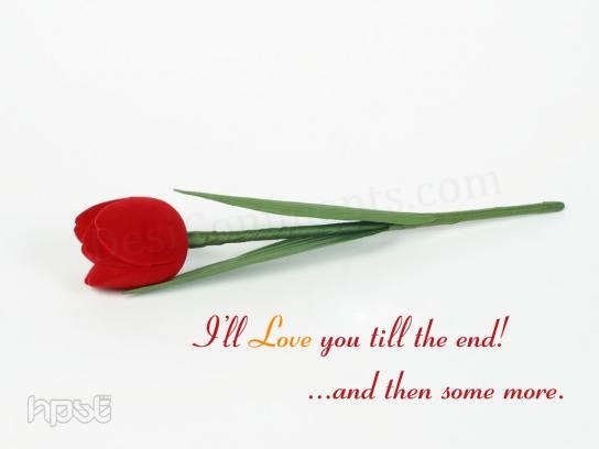 I'll Love You Till The End!