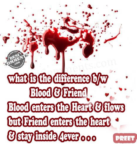 Difference between blood & friendship
