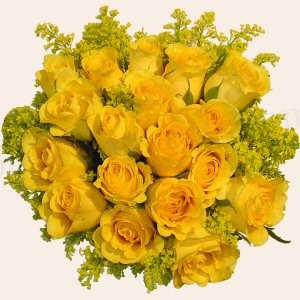 Yellow flowers desicomments yellow flowers mightylinksfo Choice Image