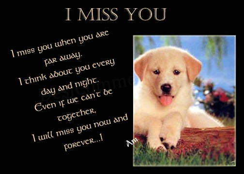 Amazing Miss You Photo Gallery
