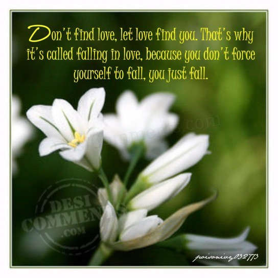 Picture: Let Love find you…