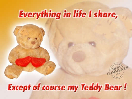 My Teddy Bear...