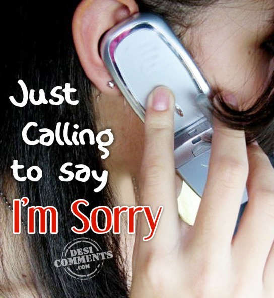 Just Calling To Say I'm Sorry