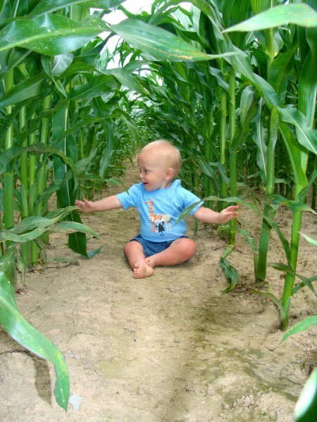 Baby in a farm