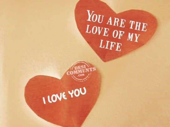 You Are The Love Of My Life Desicommentscom