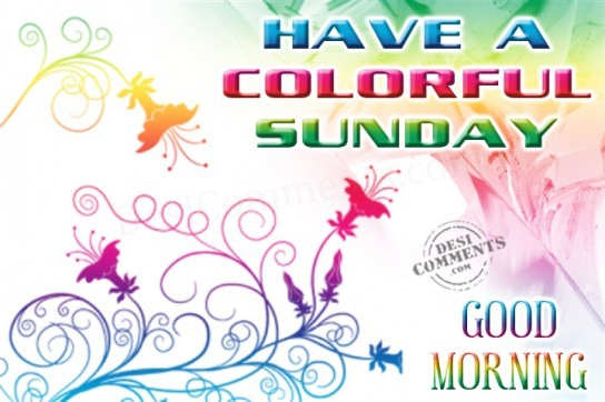 Have a colorful sunday