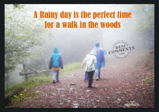 A rainy day is the perfect day...