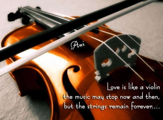 Picture: Love is like a violin