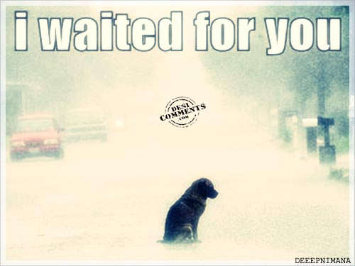I waited for you