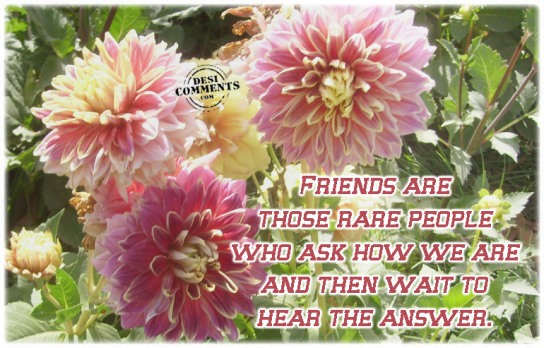 Friends are those rare people...