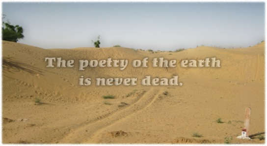 The poetry of earth...
