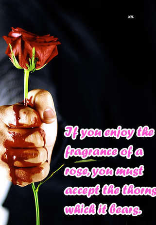 If you enjoy the fragrance of a rose...