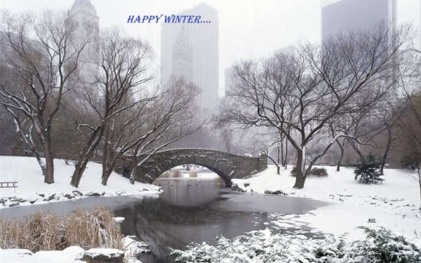 Happy Winter...