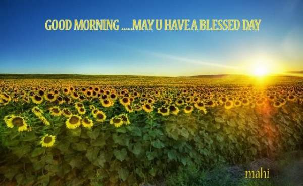 Good Morning...May you have a blessed day
