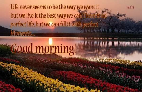 Picture: Good Morning!