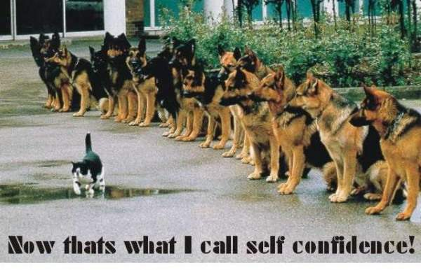 Now that's what I call self confidence!