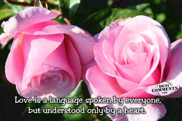 Love is a language...