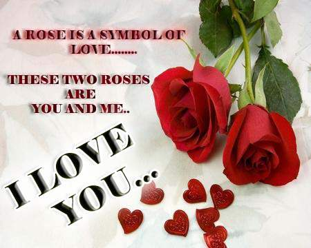A rose is a symbol of love…