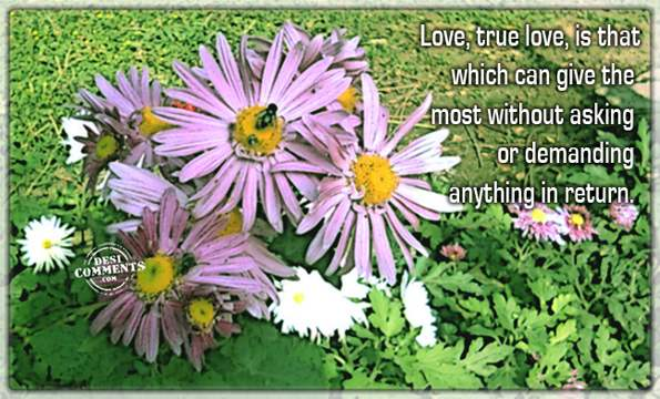 True love is that...