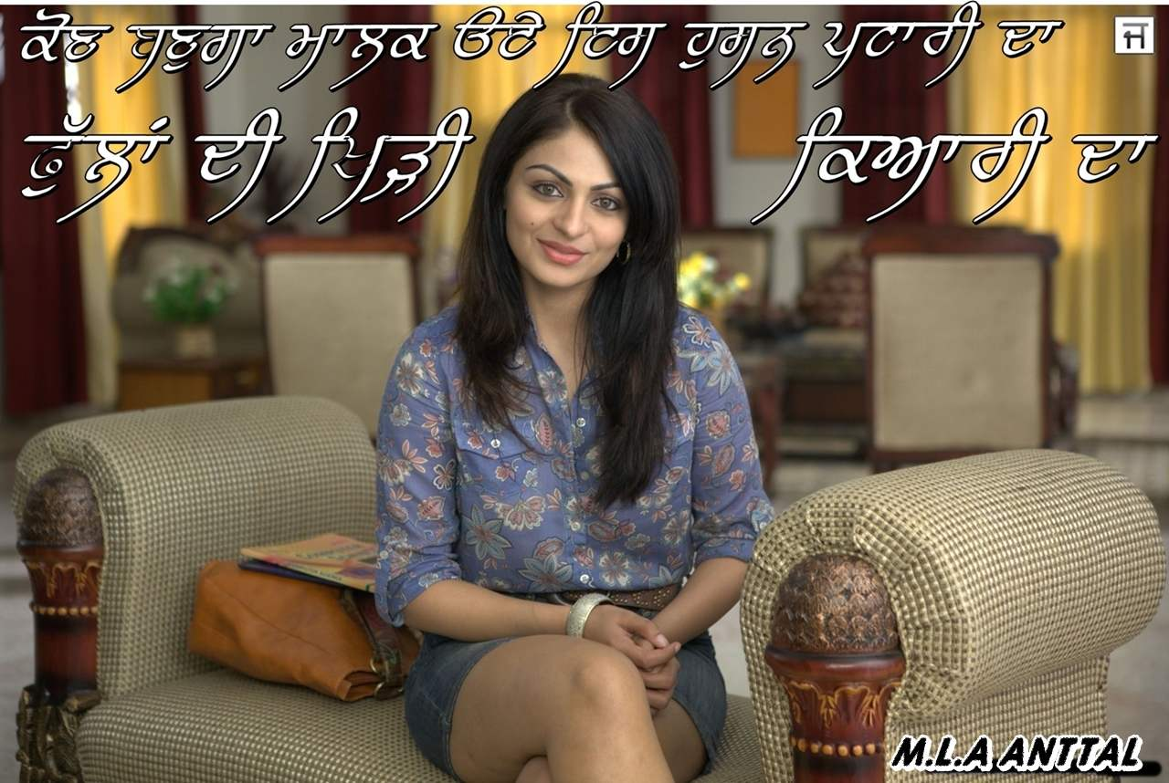 Neeru Bajwa Pictures Images Page 6