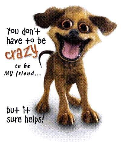 You don't have to be crazy to be my friend, but it sure helps!
