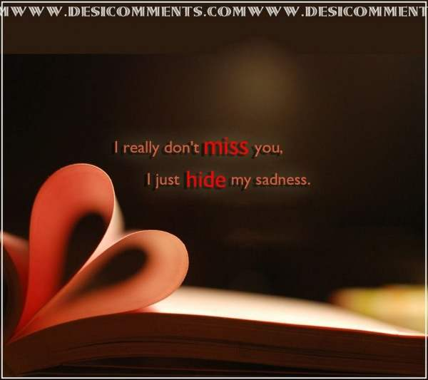 I really don't miss you