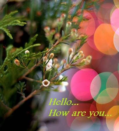 Hello, How are you
