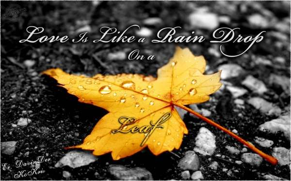 Love is like a rain drop on a leaf