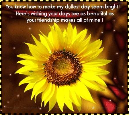 Your friendship...