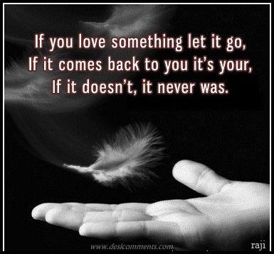 If you love something, let it go
