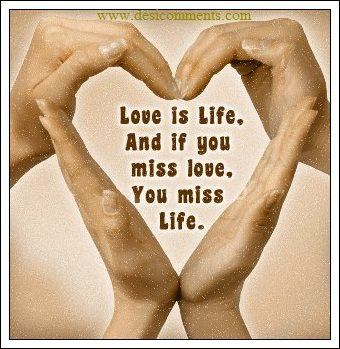 Love is life, if you miss love, you miss life