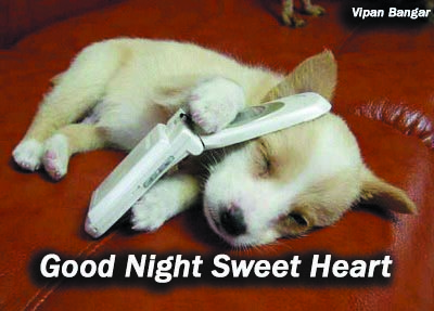 Goodnight Sweetheart Quotes Good Night Sweet Heart