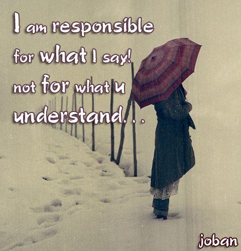 I am responsible for what I say