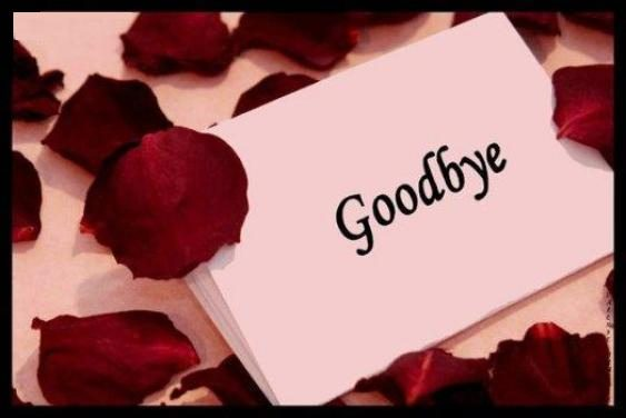 Good bye my love