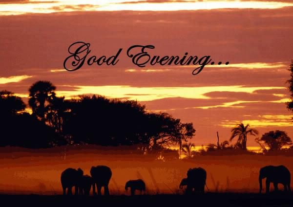 Awesome Good Evening Pic Desicommentscom