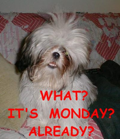 What? its monday already? - DesiComments.com