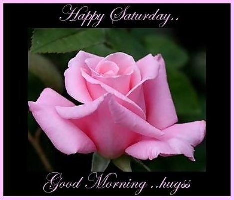 Good Morning & Happy Saturday